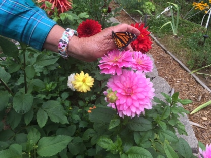 Mom's hand, gentle, nurturing, and strong.